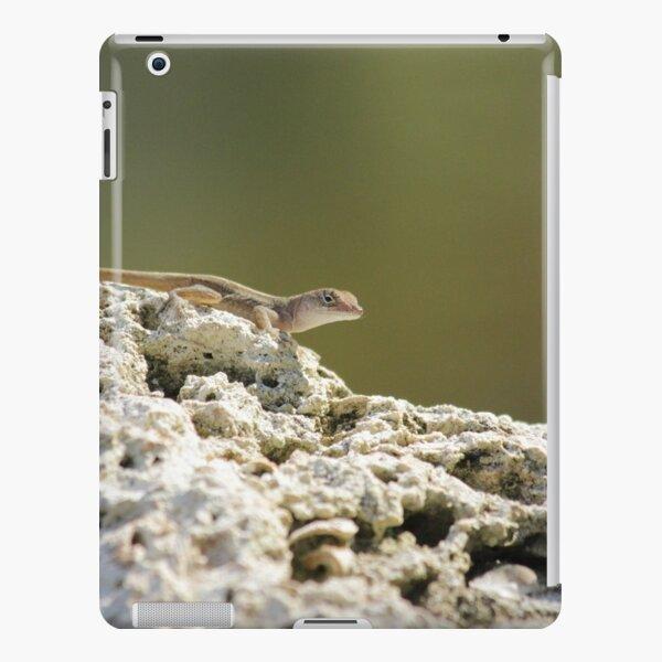 Lizard iPad Snap Case