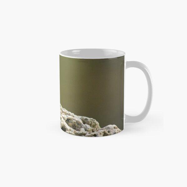 Lizard Classic Mug