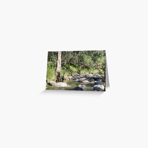 Creek in South East Queensland Greeting Card
