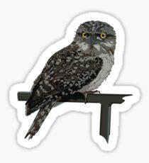 Tawny Frogmouth Owl Sticker