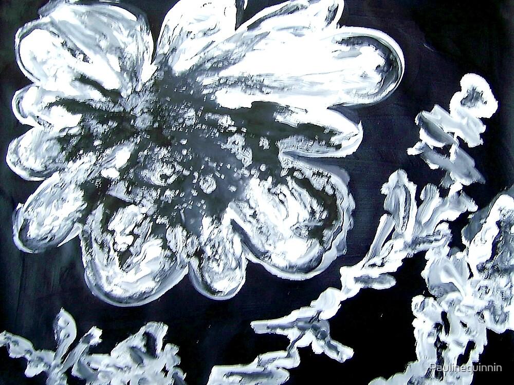 Desert Rose by Paulinequinnin