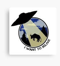 I want to belive Canvas Print