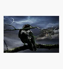 "Quoth The Raven, ""Nevermore"" Photographic Print"