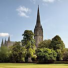Salisbury Cathedral, Salisbury, England by Clive