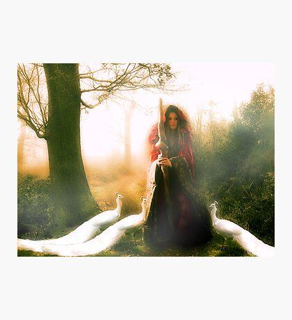 The Enchantress II Photographic Print