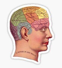 Phrenology Head Sticker