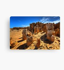 1666 Petrified forest Canvas Print