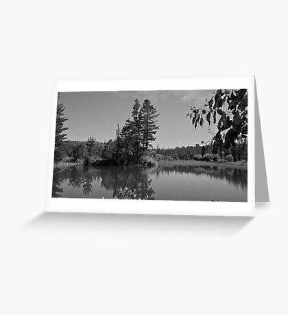 Narbethong Greeting Card