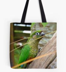 Wild Thing, You Make My Heart Sing! Maroon-Bellied Conure - NZ Tote Bag