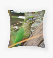 Wild Thing, You Make My Heart Sing! Maroon-Bellied Conure - NZ Throw Pillow
