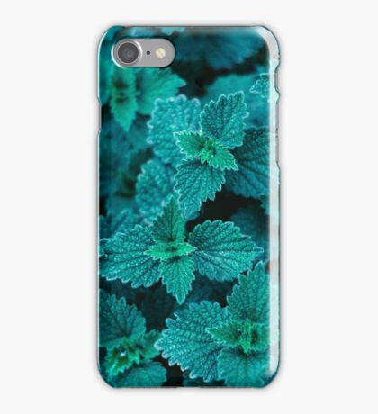 Cold Green iPhone Case/Skin