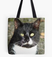 Look  Into My Eyes - Black & White Cat - NZ Tote Bag