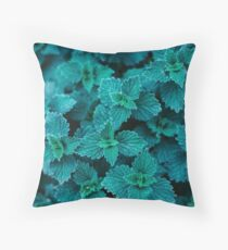Cold Green Throw Pillow