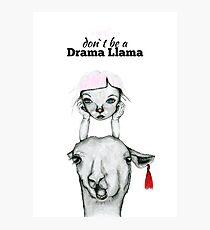 Drama Llama Photographic Print