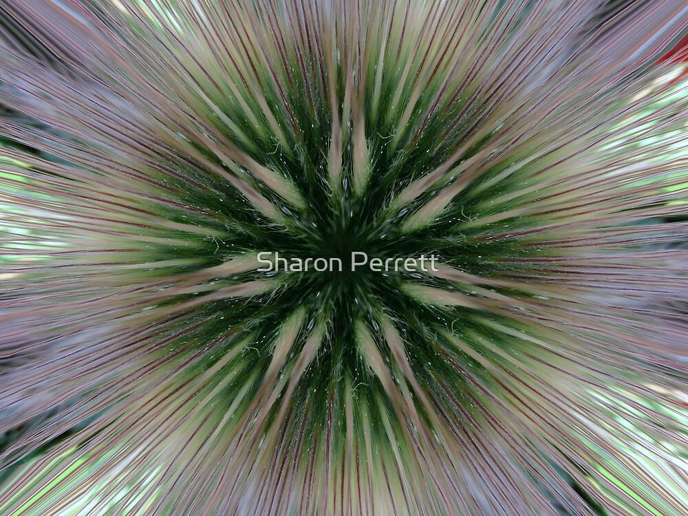 Electrifiying 02 by Sharon Perrett