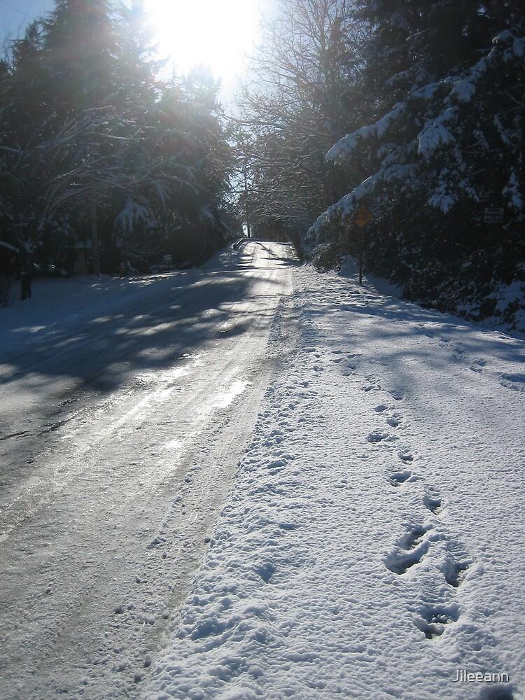 February 2007 Snow Storm  by Jileeann