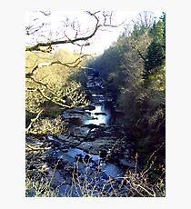 Lanarkshire Burn Photographic Print