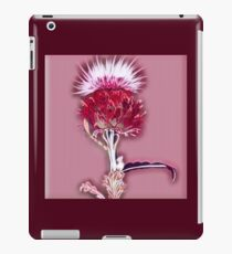 Scottish Thistle iPad Case/Skin