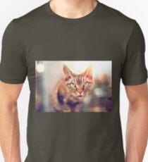 Devon Rex purebred domestic cat looking at camera Unisex T-Shirt