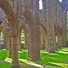 Tintern Abbey by caymanlogic