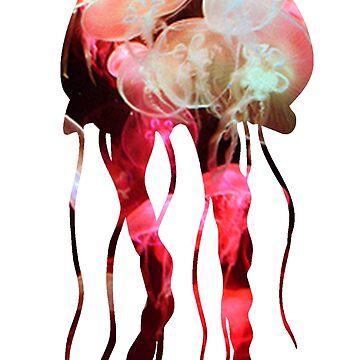 Jellyfish  by jellyfishsbc