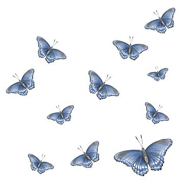 Blue Butterflies by botanicalsbyV