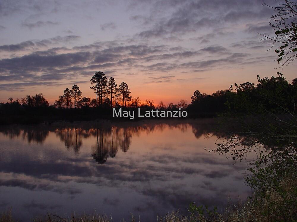 Morning on Bear Creek by May Lattanzio