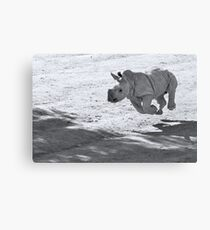 I can fly! Oww... no I can't Canvas Print