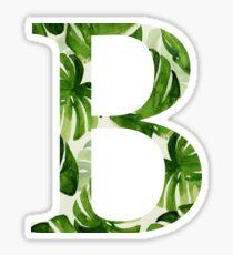 Beta Sticker