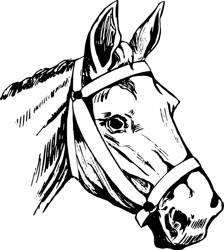 Horse Head by seriouscereal