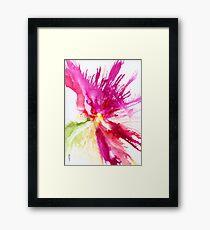 SPRAY BLOOM Framed Print