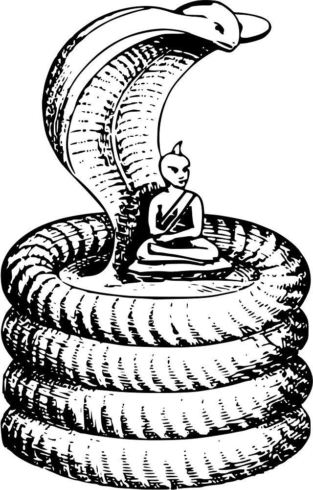 Buddha Cobra by seriouscereal