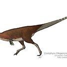 Coelophysis (Megapnosaurus) kayentakatae by SerpenIllus