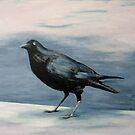crow #1 by davey