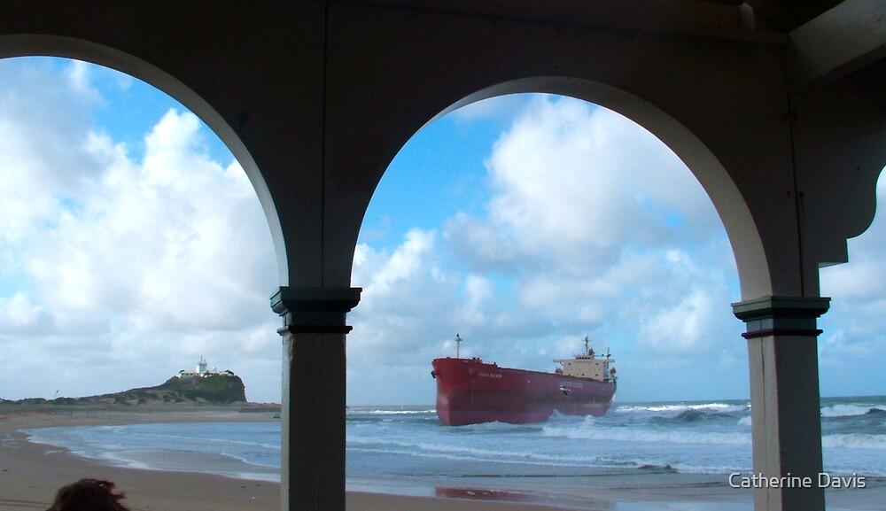 Pasher Bulker Nobbys Beach Newcastle by Catherine Davis