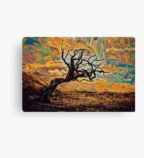 One tree, one sky. Canvas Print