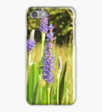 Purple Blossoms of the Wetlands iPhone Case/Skin