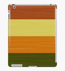 Brush Stroke Stripes: Fall Foliage iPad Case/Skin