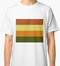 Brush Stroke Stripes: Fall Foliage Classic T-Shirt
