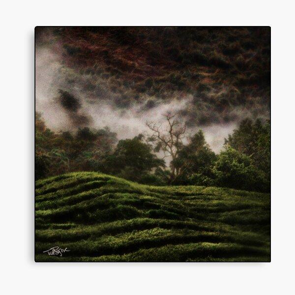 Uganda: Tea Quilt Canvas Print