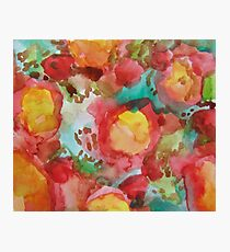Colourful Flowers Photographic Print