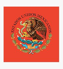 Close up of seal in the national flag of Mexico Photographic Print