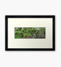 HDR Composite - Abandoned Farmstead Framed Print