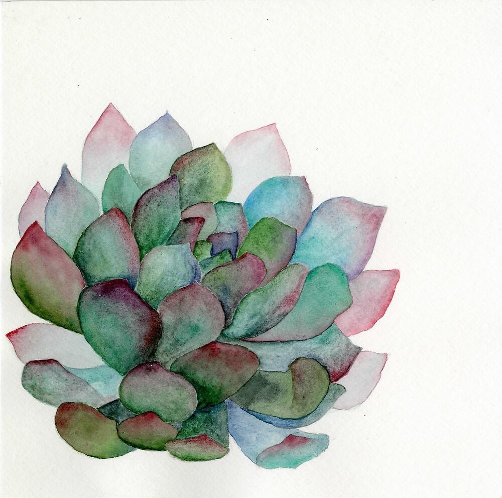 minimalist watercolor succulent by e mori