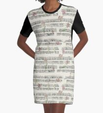 Amsterdam streetscape (late 1700s) Graphic T-Shirt Dress