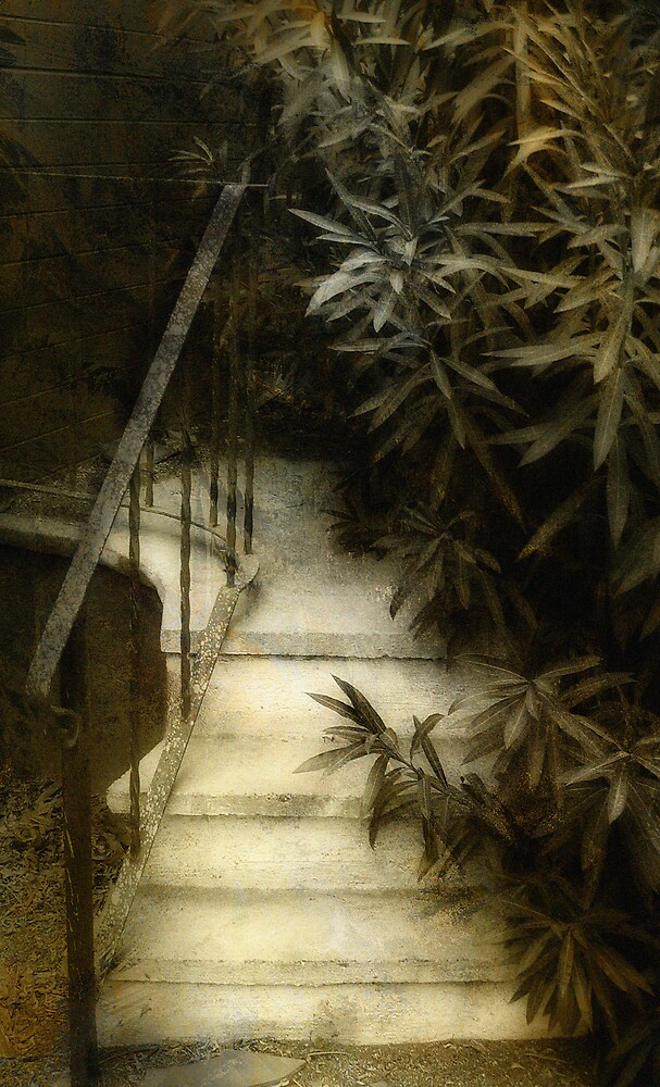 Hidden Stairs by Jing3011