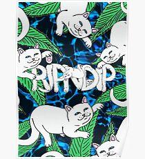 RIPNDIP Chill Cat Poster