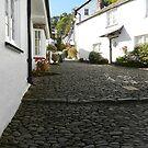 Upstreet, Clovelly. Devon by hans p olsen