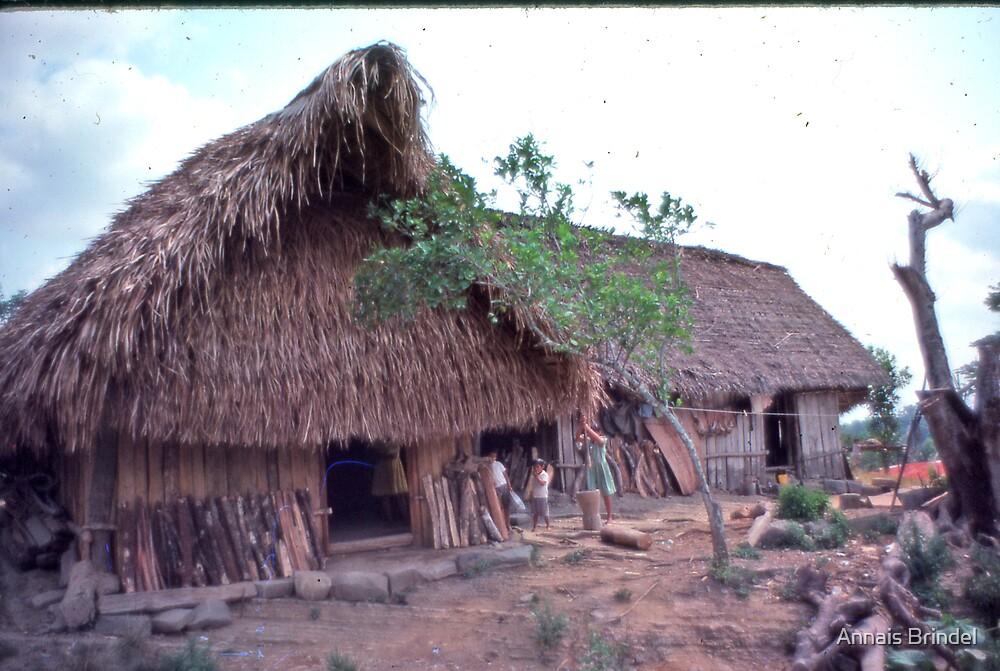my adoptive home Belize by Annais Brindel