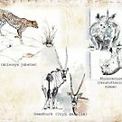 Lodge décor - Wildlife Triptych by Maree Clarkson
